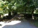 park za kościołem